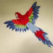 Papegaai voor de zoon